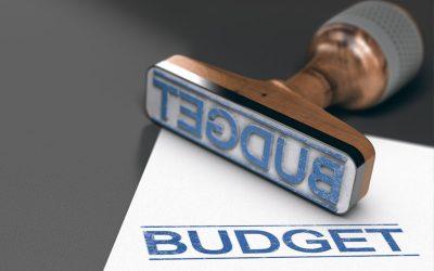 2020/2021 Budget Summary